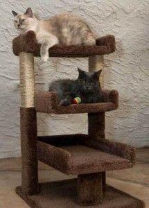 New Cat Condos Triple Perch