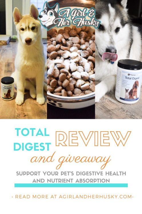 Total Digest Supplement Review and Giveaway Dog