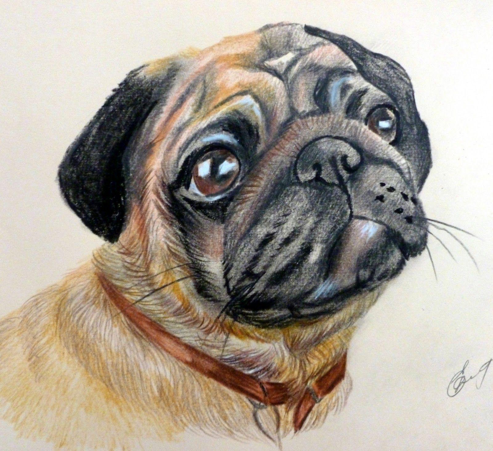 Крутые рисунки собаки, воскресенье картинки