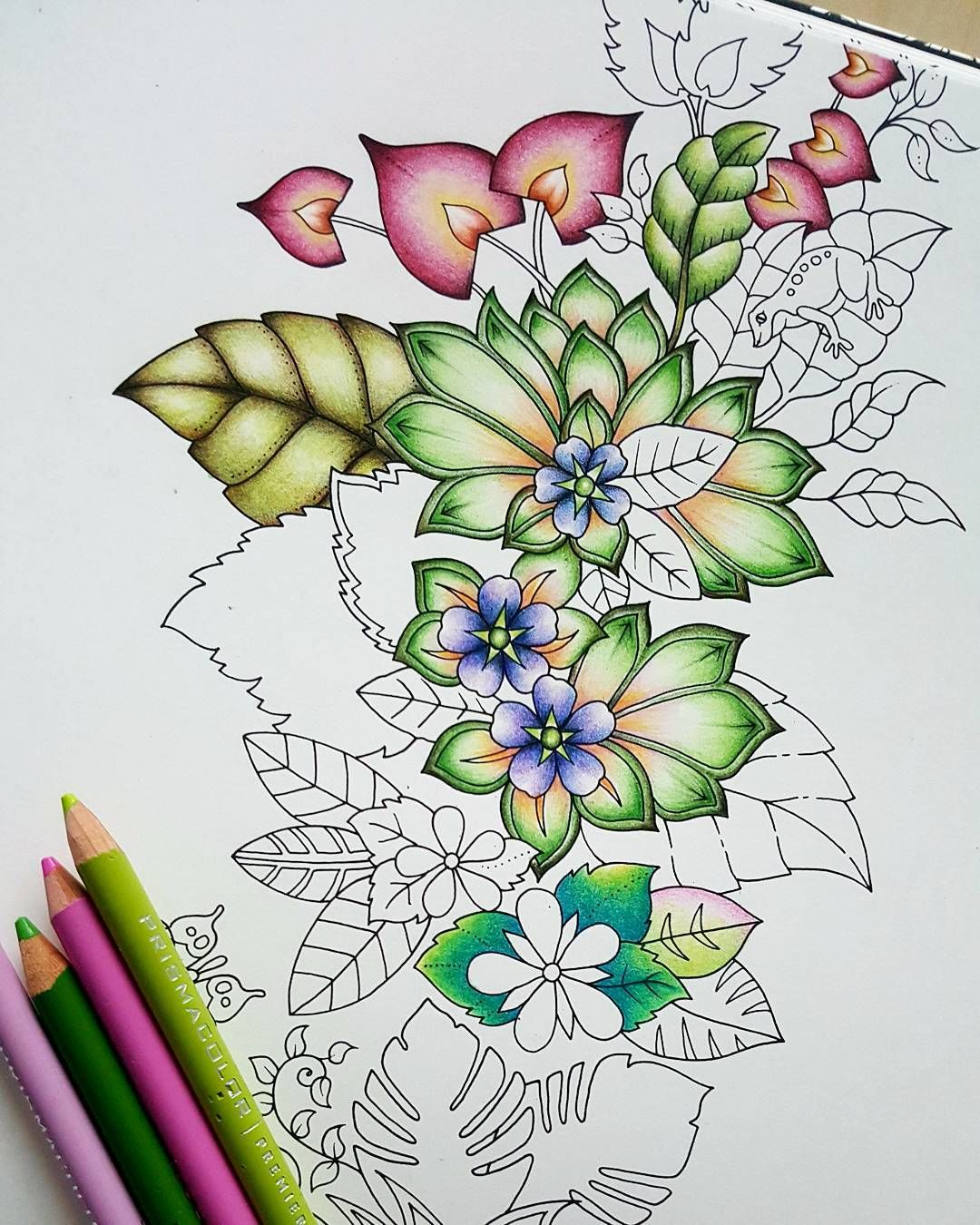 160 Coloring In Magical Jungle Ideas Johanna Basford Coloring Johanna Basford Coloring Book Magical Jungle Johanna Basford