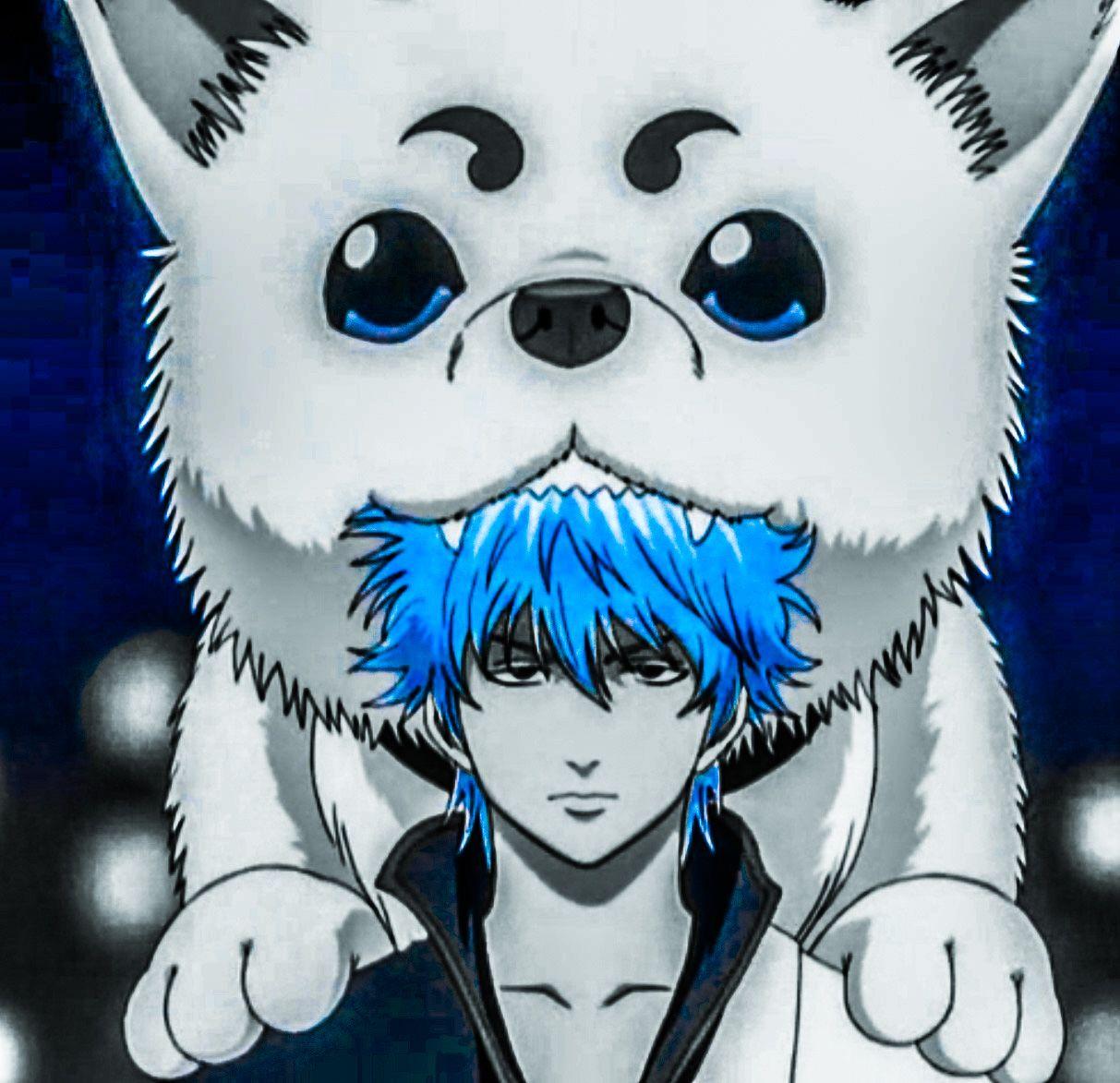 gintamaaveryunderatedshow/ Anime, Anime reviews, Bad