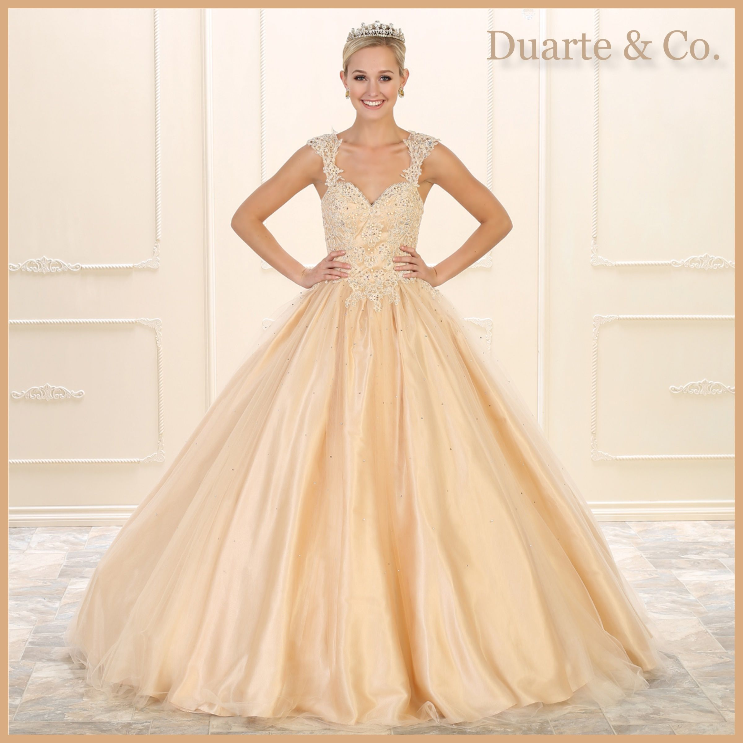 Quinceanera & Sweet 16 Ball Gown W/Plus Sizes - LK99 | Sweet 16 ...