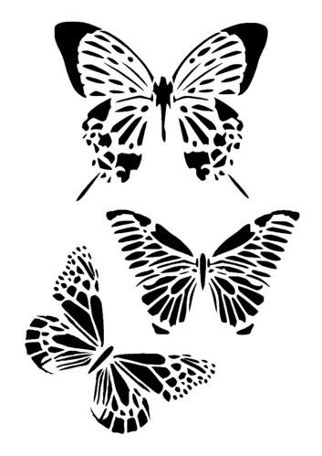butterfly collection stencil 2 stencil Pinterest Stenciling