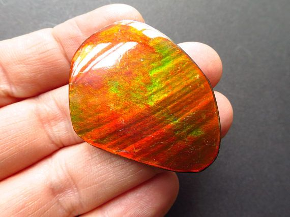 Ammolit cabochon Farbwechsler Fossil Ammolit  grün gelb orange