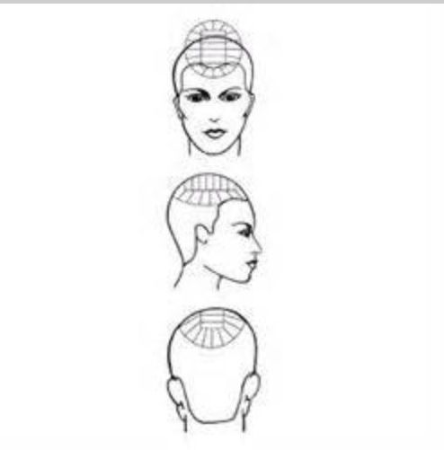 hair sectioning pattern diagram for multi-colored streaks  color placement