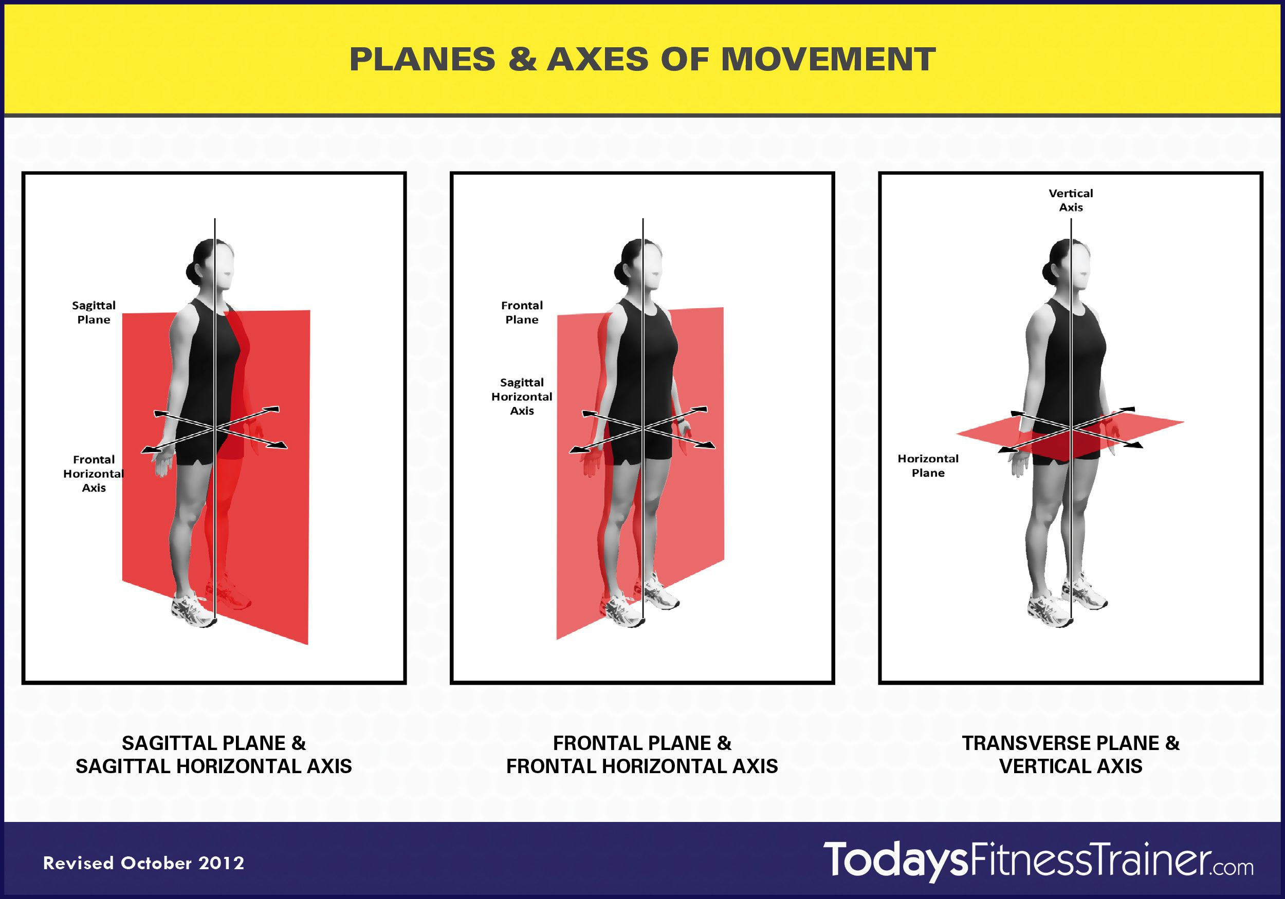 Anatomical Planes and Axis | Planes Axes of Movement 1024x716 ...