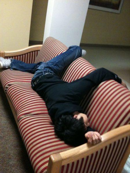 Funny Sleeping Pics : funny, sleeping, Funny, Pictures, People, Sleeping