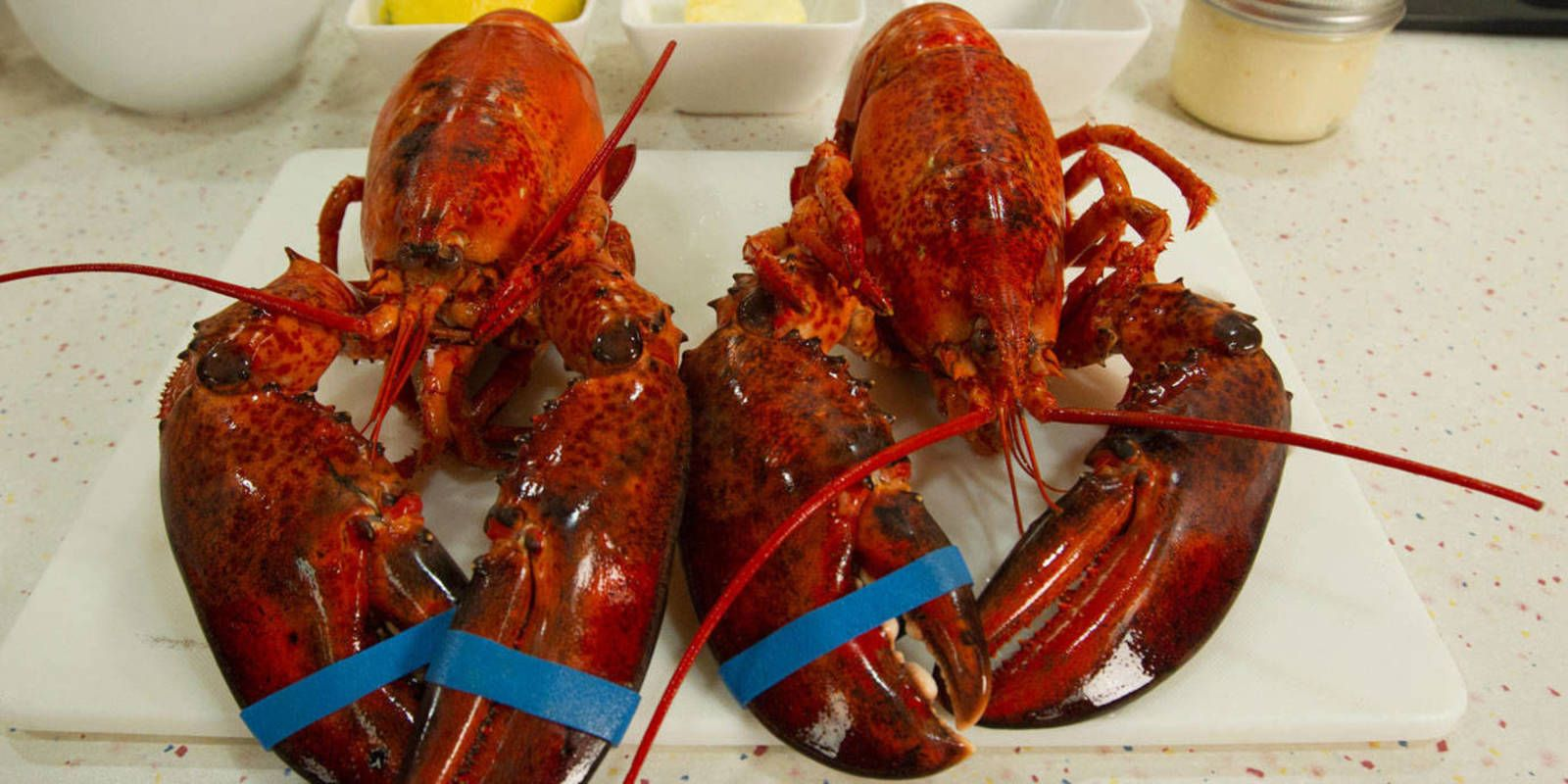 How to eat a lobster eat lobster party dining etiquette