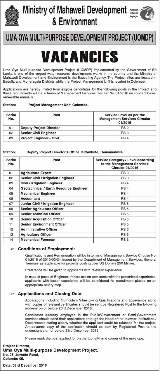 Lot of Engineering, Accounting, Office Job Vacancies - Ministry of - development director job description