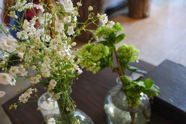 Nuestra ubicación :3 | Flor de Capomo