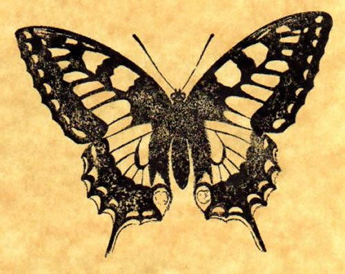 Tiger Swallowtail Rubber Stamp Etsy Swallowtail Butterfly Tattoo Swallowtail Butterfly
