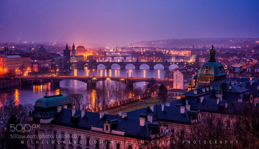 Prague from Lenta Park by wilhelmchang