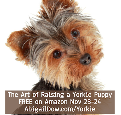 Sweet Yorkie Puppies Yorkshire Terrier Yorkie Dogs Free On Amazon Nov 23 24 Congrats Abigail Yorkie Cute Animals Puppies Puppies