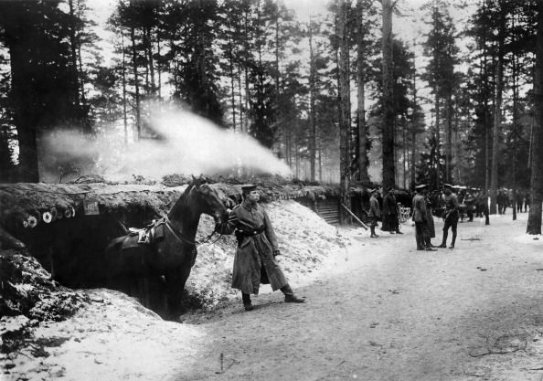 dugouts for horses of the German army in a forest near Daugava river around 1915