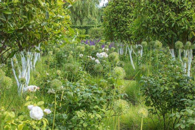 Old Rectory, Northamptonshire | Garden, Landscape design ...