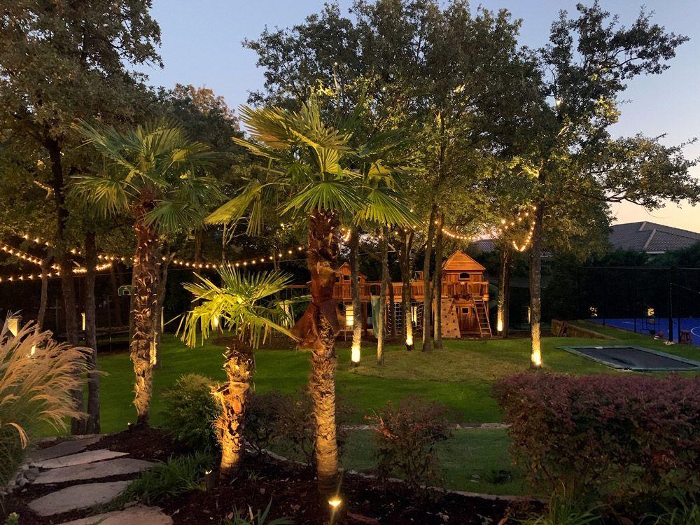 Permanent Bistro Lighting Palm Tree Uplighting Dallas Landscape Lighting In 2020 Landscape Lighting Christmas Light Installation Tree Uplighting