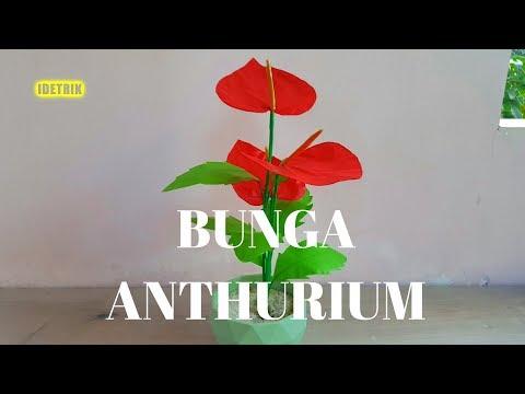 (1415) Cara Membuat Bunga Anthurium Andraeanum dari
