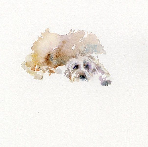 Dog Watercolor Sketch Watercolor Dog Dog Art Dog Paintings