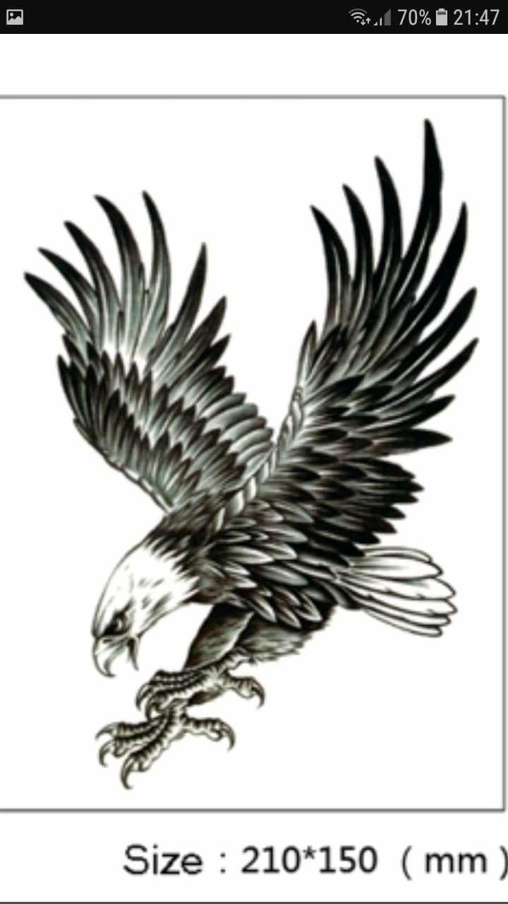 Henna Tattoo Für Jungs: Pin Von Ramy's Tattoo Auf Păsări...