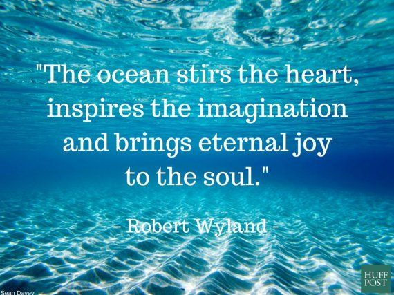 Quotes About Ocean Stunning 11 Quotes About The Ocean That Remind Us To Protect It  Pinterest