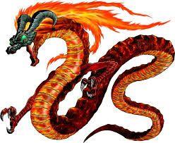 Resultado de imagem para estampas de dragão para camisetas