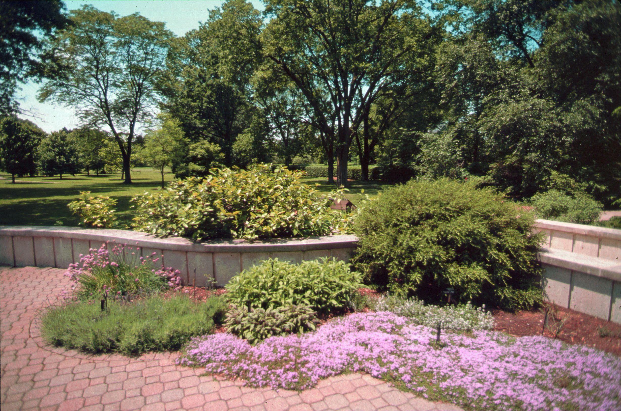 Herb Garden    #nature #mortonarboretum #garden #Chicago #outdoors