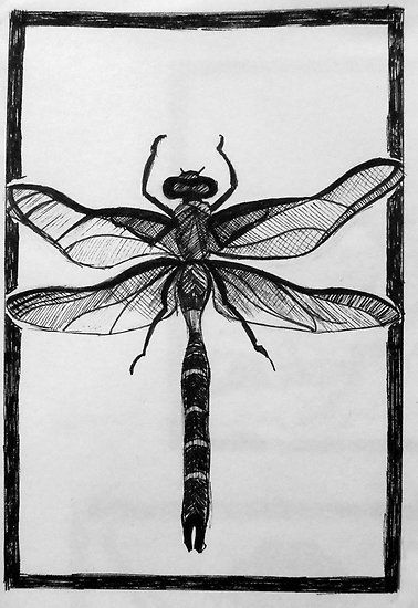 Design for dragonfly lino print by cssart
