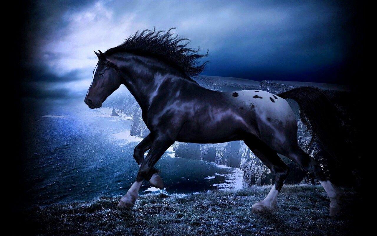 Simple Wallpaper Horse Photography - e1eac90437e7891bcceb2e9a89dfaafa  Photograph_152118.jpg
