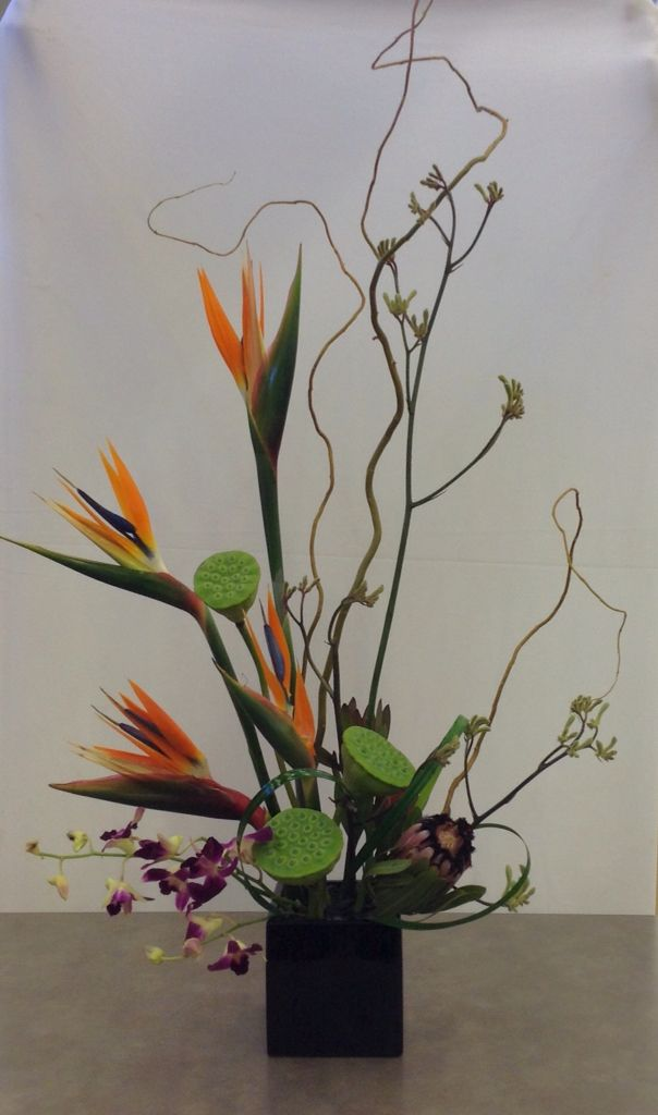 Birds of paradise, protea, lotus pods and dendrobium orchid floral ...