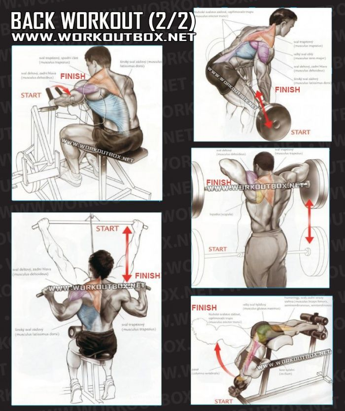 Ejercicios para espalda www.mancave.com.ar | Chest workouts ...