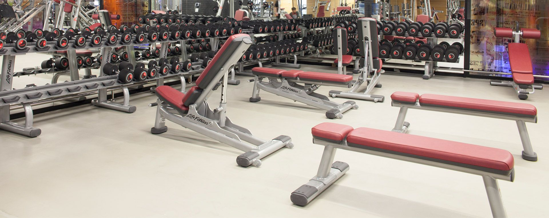 Life fitness signature series benches racks in lets club