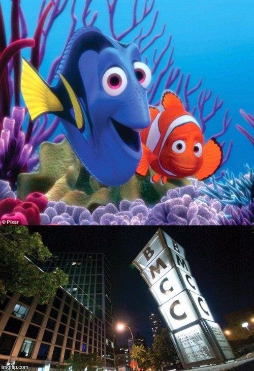 Pin by Seraiah Naomi on Just Humor :-D | Disney duos ...  Walt Disney Pictures Presents A Pixar Animation Studios Film Finding Nemo