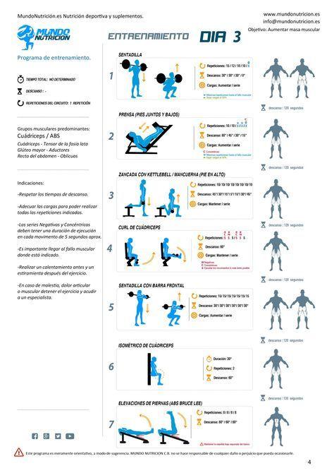 Pin de Rocio Santos en Lower body | Gym training program ...