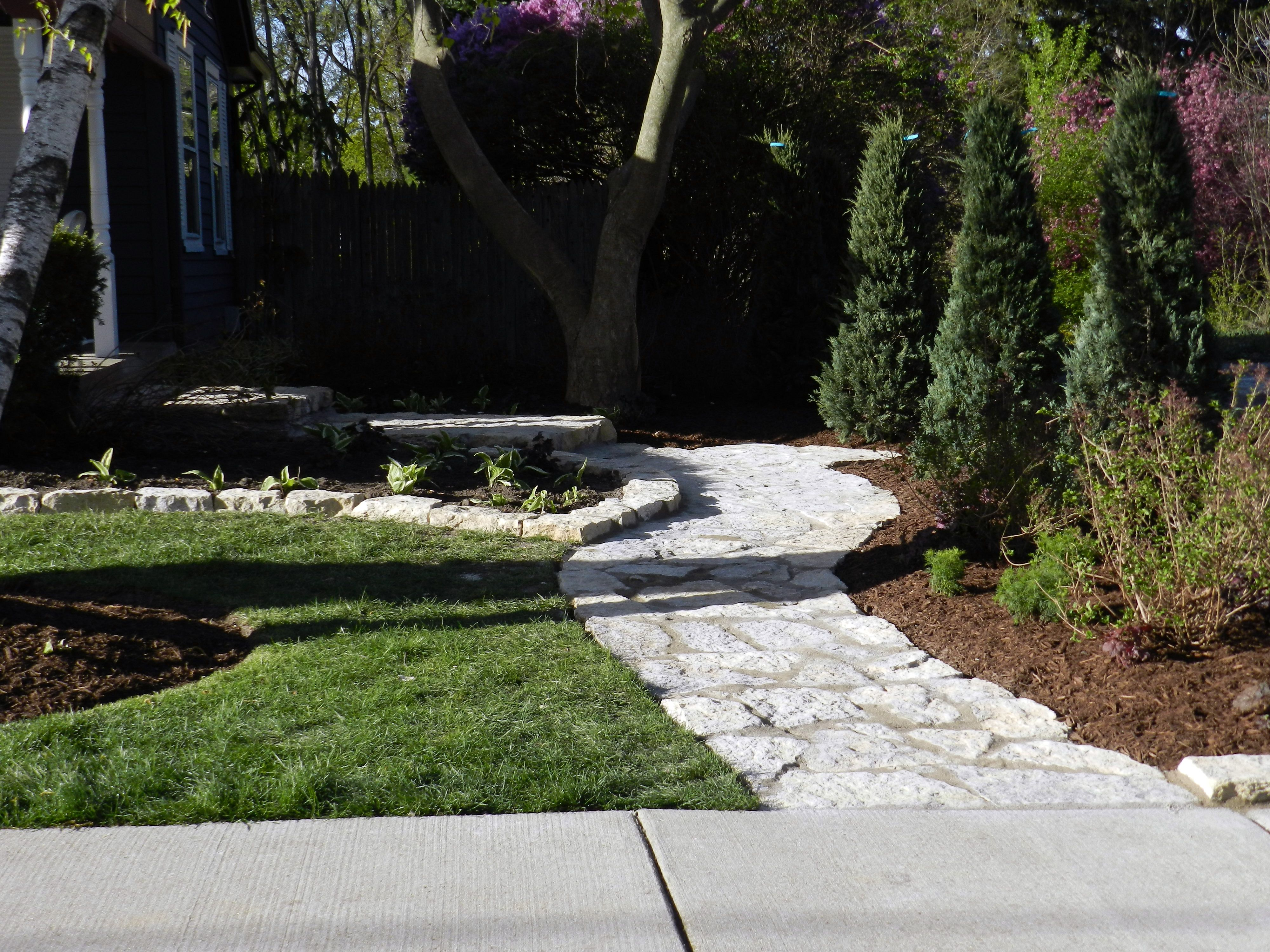Complete Replanting Of Entire Side With Larger Junipers Small Ground Cover And Mixed Shrubs Call Not Just Grass Lawn Maintenance Flagstone Walkway Hardscape