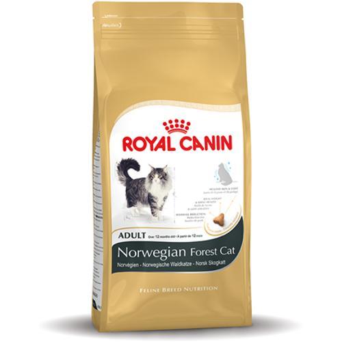 Royal Canin Norwegian Forest Cat Adult 10kg Perzische Kat Kattenvoer Recepten Dierenbenodigdheden