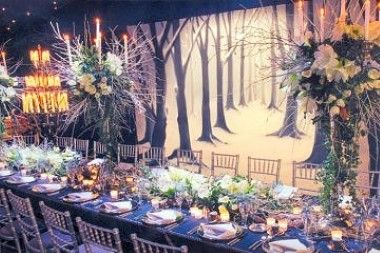 Image Detail For Winter Wedding Theme Ideas