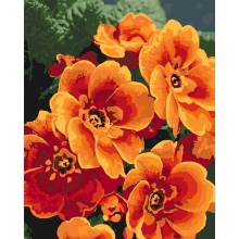 Купить Картина по номерам - Примула оранжевая (КНО3050) от ...