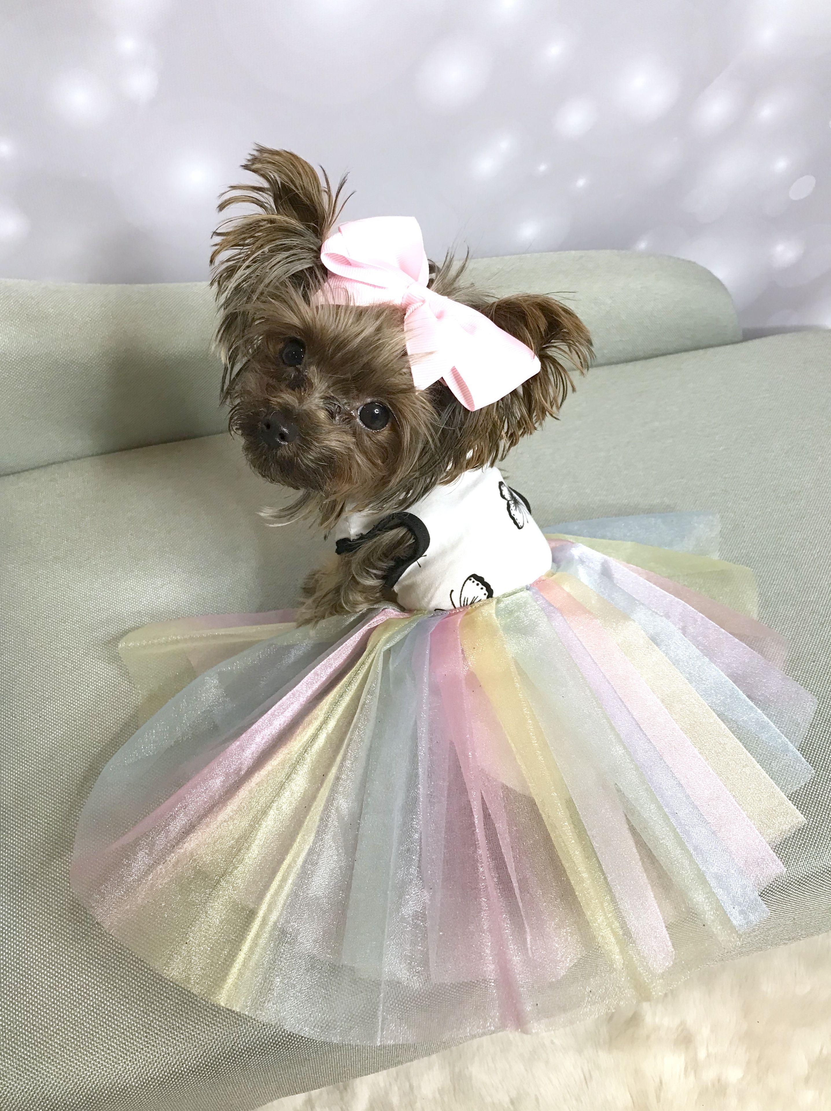 Pin By Sophia Shen On Sable Yorkie Zoey Flower Girl Dresses Flower Girl Tulle Skirt