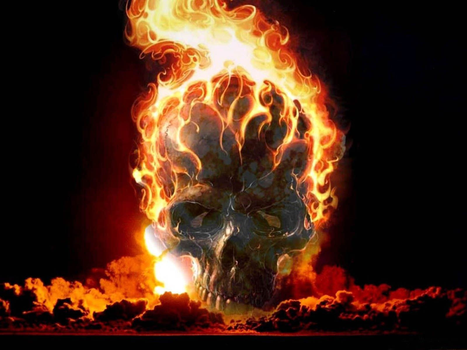 cool skull pictures | Tag: Horror Skull Wallpapers, Backgrounds, Photos, Pictures, and ...