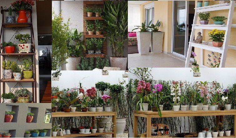 Id ias para plantas em estantes varandas com jardins - Estantes para plantas ...