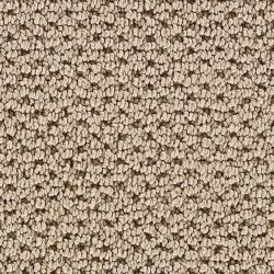 Martha Stewart Living Mount Vernon Color Natural Twine 12 Ft Carpet Buying Carpet Carpet Living Room Carpet