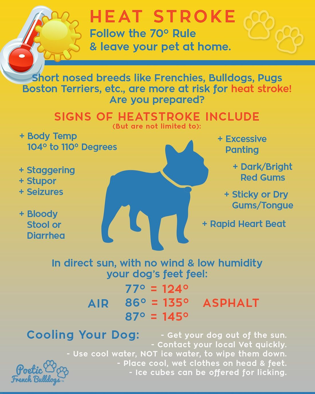 Heatstroke Info Please Repost For All Pet Owners To See