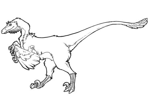 Raptor Dinosaur Coloring Page Dinosaur Coloring Dinosaur Coloring Pages Raptor Dinosaur