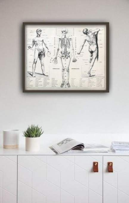 20+ super ideas for medical poster ideas human body #medical