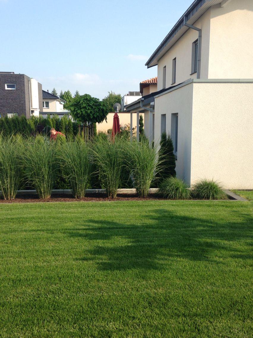 Garten mit Gräsern | Moderner Garten | Pinterest