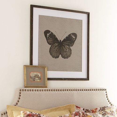 Dining Room Art or Nursery Split Butterfly - Metamorphosis Framed Print II #birchlane
