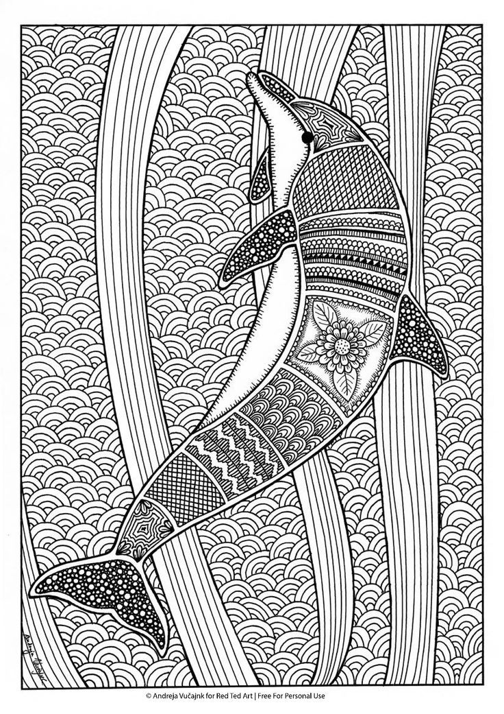 Free Colouring Pages for Grown Ups Dolphins Coloring