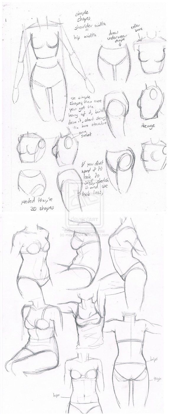 female body torsos by may12324 dibujos pinterest girl face