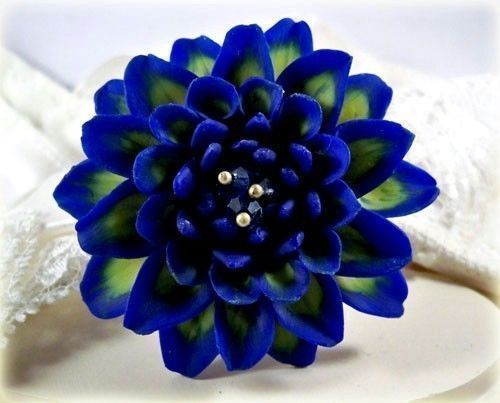 Guess I Need To Visit Alaska In The Summer To See Some Blue Dahlias Dahlia Flower Blue Dahlia Zinnia Flowers
