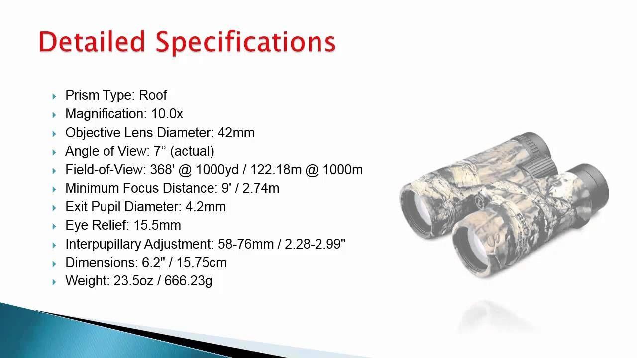Leupold Bx2 Acadia 10x42 Binoculars Review